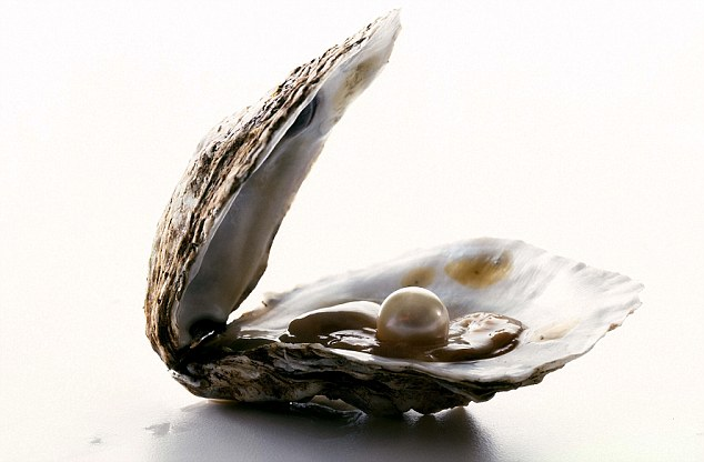A pearl oyster