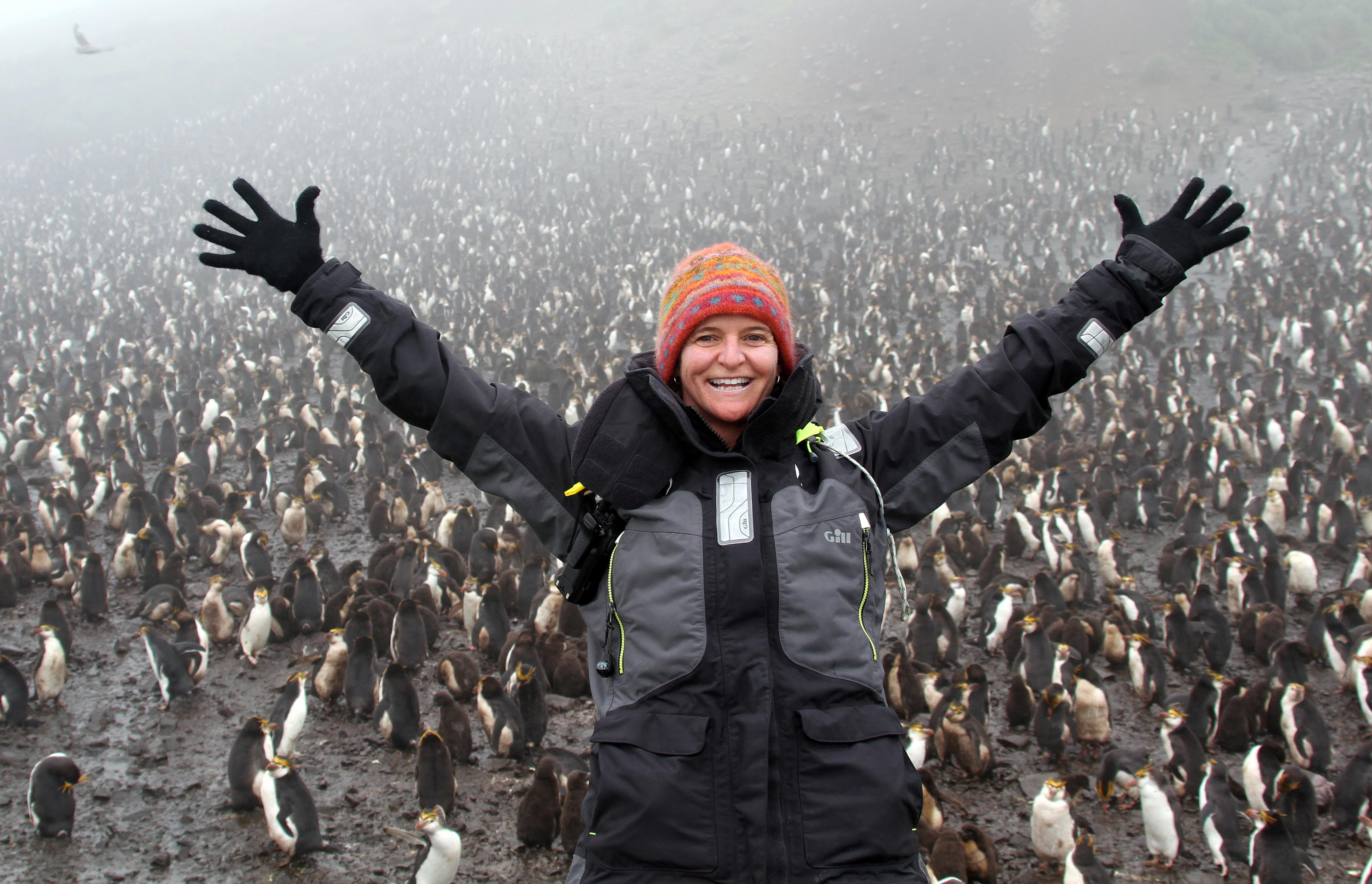 Surrounded by a royal penguin colony -- like Woodstock on day three...