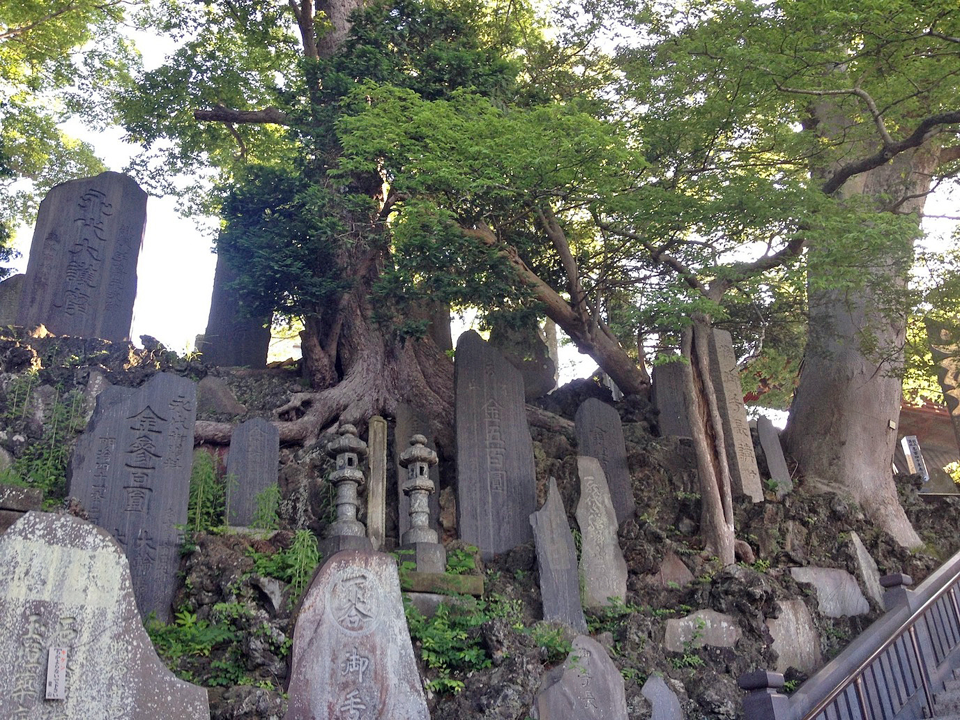 These must be headstones, but they are HUGE.  The temple grounds are peppered with them.
