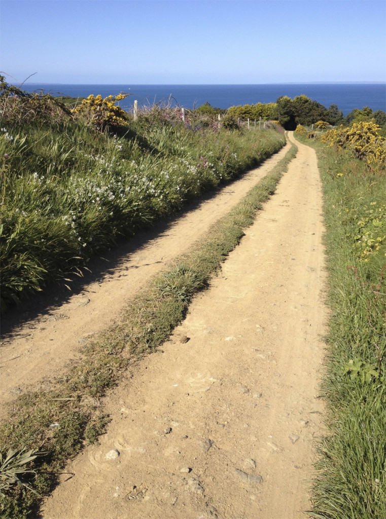 Wandering one of the many un-named dirt roads on Sark.