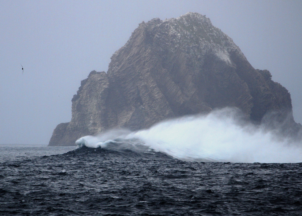 Remote and wild, the islands are sometimes little more than bare rocks in the big Southern Ocean.